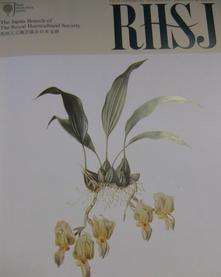 RHSJ.jpg