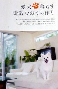 愛犬パンフ.jpgのサムネール画像